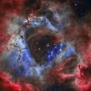 Rosette Nebula,                                John Kanouse