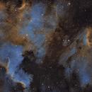 North American with Pelican Nebula,                                John Massey