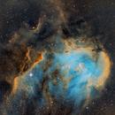 IC 2948 SHO, Running Chicken Nebula,                                Marcelof