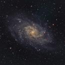 Messier 33 ( M33, Triangulum Galaxy ),                                Alessandro Curci