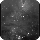NGC 2264, Christmas Tree Cluster/Cone Nebula, Hα False Color Animation, 31 Jan 2015,                                David Dearden
