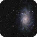 Triangulum Galaxy and Comet 156P/Russell-LINEAR,                                Terry Hancock