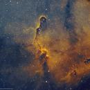 IC 1396 •Elephant Trunk Nebula in SHO,                                Douglas J Struble