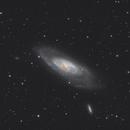 M106,                                David Wills (PixelSkies)