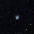 M101 at 480mm 2020,                                Bob Stevenson