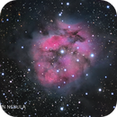 Cocoon Nebula,                                Anis Abdul