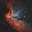 Wizard nebula Ha - OIII,                                sky-watcher (johny)