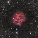 Cocoon Nebula,                                Nathan Duso