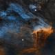 The Pelican Nebula IC 5067 IC 5070,                                Wissam Ayoub