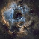 NGC2237,                                Nicola Davide Furnari