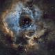 NGC2237,                                Nicola Davide Fur...