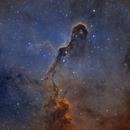 IC 1396 Elefanttrunk BiColor,                                Oliver