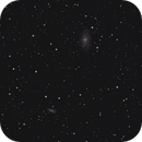 NGC 2336,                                Josef Büchsenmeister