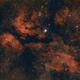 QHY 268C Image Test II: Central Cygnus,                                Alex Roberts
