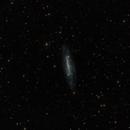 NGC 7306,                                Francesco