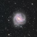 M83,                                Scotty Bishop