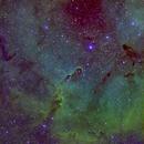 IC 1396 Elephant Trunk Nebula,                                hahaleung