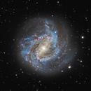 M83,                                Logan Carpenter