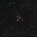 NGC 7317-20 Stephan's Quintet,                                NewLightObservatory