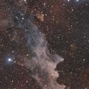 IC 2118 - Witch Head Nebula,                                Dennis Sprinkle