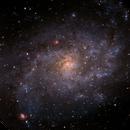 M33  Triangulum,                                Scott Alber