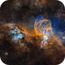 NGC3576 Statue of Liberty (Hubble Palette),                                Bryan He