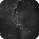 IC 1396 Elephant's Trunk Nebula in Hydrogen-alpha,                                Barczynski