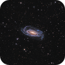 NGC 5033 A Beautiful Seyfert Galaxy in Canes Venatici,                                John Hayes