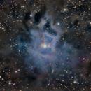 NGC 7023 Iris Nebula,                                Simonas Pauliukev...