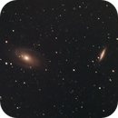 Bode and Cigar Galaxy,                                Lucas Maguire
