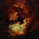 Geography and Animals: North American Nebula (NGC 7000) and the Pelican Nebula (IC 5070),                                Chris Hunt