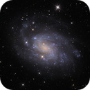 NGC300,                                Ray Johnson