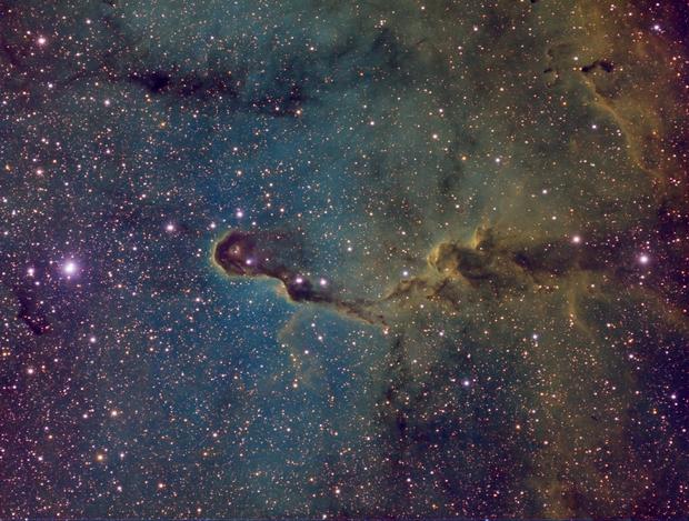 IC1396 - RGB SHO - Elephant's Trunk Nebula in Cepheus,                                Daniel.P