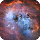 The Heart of IC 410 and the Tadpoles,                                Wissam Ayoub
