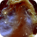 IC 434, The Horsehead Nebula (close-up),                                Ruben Barbosa