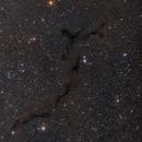 B150-The Sea Horse Nebula,                                Bob J