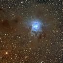 NGC7023 Iris Nebula,                                Jeff Kraehnke