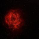 Rosette Nebula - Caldwell 49,                                tomekfsx