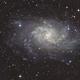 Triangulum Galaxy M33,                                Michi Scheidegger