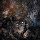Gamma Cygni Region,                                Richard S. Wright Jr.