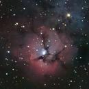 Trifid Nebula - July 2018,                                Timothy Fukuyama