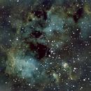 IC410 - Tadpoles - New SHO,                                Kenneth Hoynes