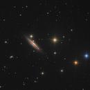 NGC4217 Galaxy,                                Serge