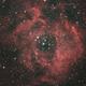 NGC 2244 ROSETTE NEBULA HaLRGB,                                Michael Caller