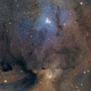 IC 4604,                                Casey Good
