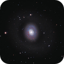 M94 LRGB,                                Uwe Deutermann