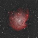 Monkey Head Nebula (HaR-OIIIGB),                                Charles Ward