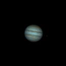 Jupiter GRS transit - ANIMATED GIF,                                Arno Rottal