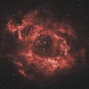 Rosette Nebula,                                Tamas Kriska