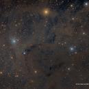 Perseus Molecular Cloud,                                Eric Coles (coles44)